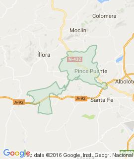 Pinos-Puente