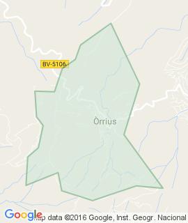 Orrius