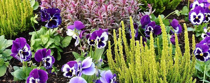 5 Ideas de decoración para pequeños jardines