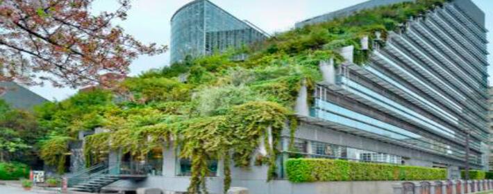 Tendencias arquitectura: fachadas verdes