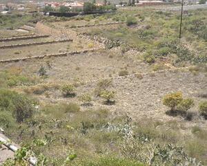 Terrenos En Venta San Miguel De Tajao Santa Cruz De Tenerife Vivados