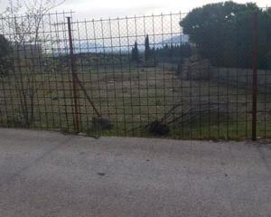 Parcela en Cerromolina, Afueras de Jaén Jaén