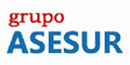 Grupo Asesur