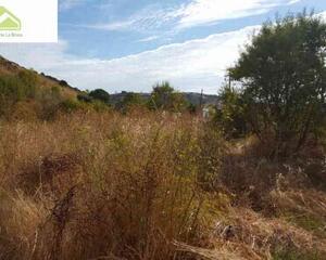 Finca buenas vistas en San Isidro , Zamora
